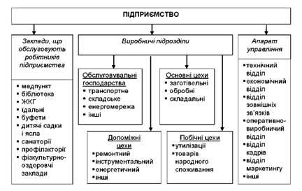 Виробнича структура підприємства