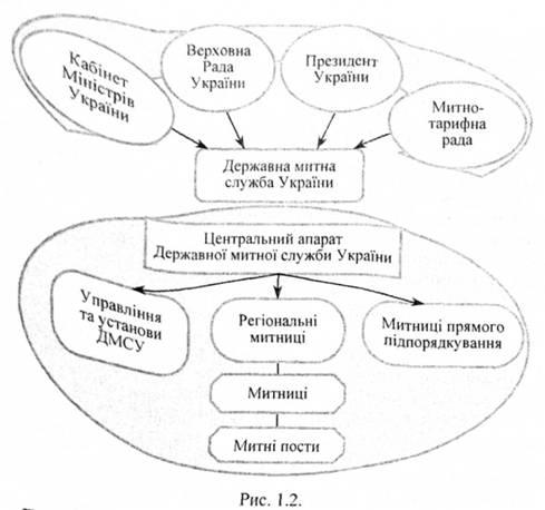 Структура митної системи україни