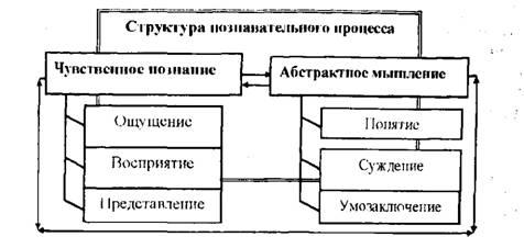 metodi-poznaniya-shpargalki-po-filosofii-prava