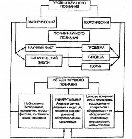 Теоретический уровень познания схема