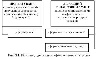 Різновиди державного фінансового