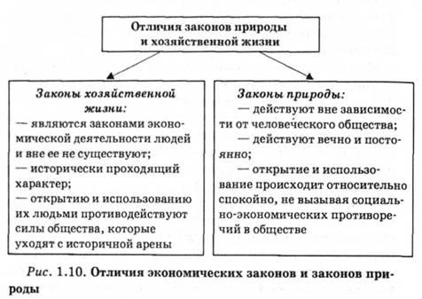 Заключение трудового договора ИП с работником