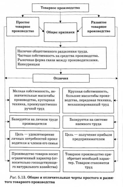 простое товарное производство и капиталистическое общие черты